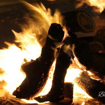 Noche de hogueras de Sant Antoni