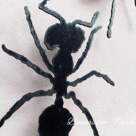 Las hormigas de Benicàssim, las hormigas de Capi