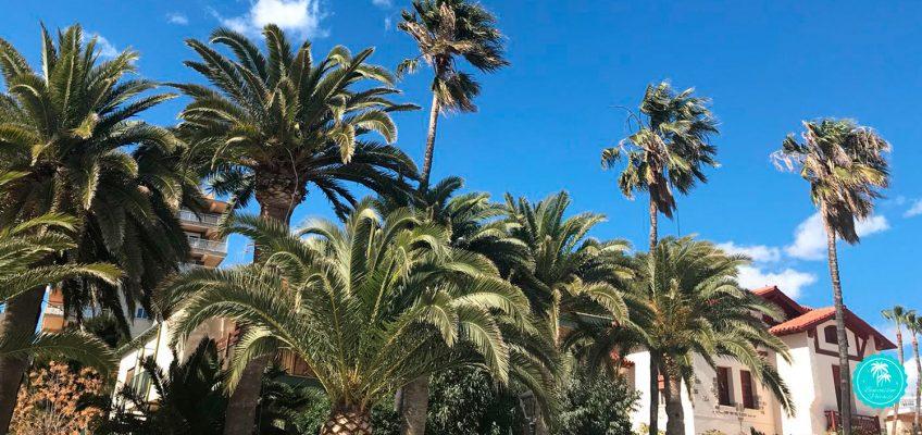 7 lugares para ver en Benicàssim