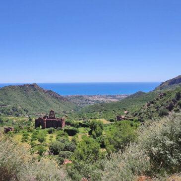 El Desierto de las Palmas: Paraje Natural protegido desde 1989